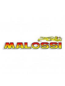 Sticker Original MALOSSI Italy Large Size